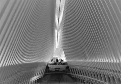 oculus-3568297_640